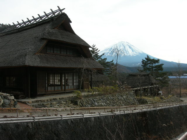Mt. Fuji from Iyashi no Sato Sai-ko Nenba