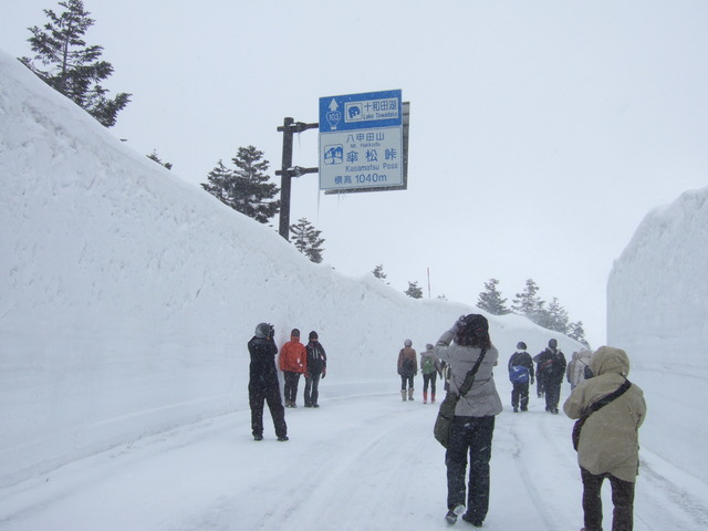 Snow wall walk on Mount Hakkōda