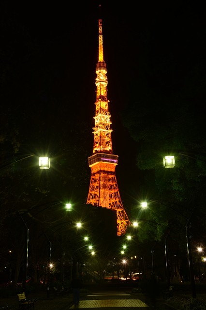 Tokyo Tower(Landmark Light winter version)